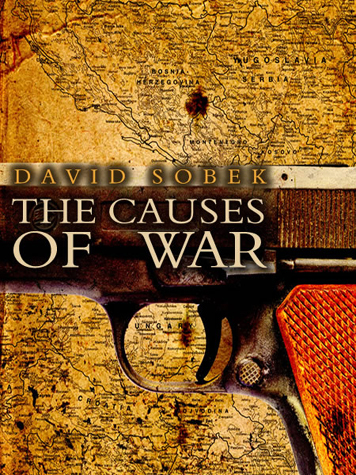 the cause of wars